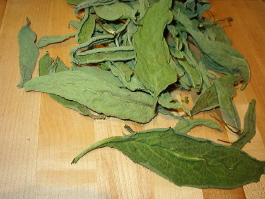 how to make a fresh comfrey leaf poultice